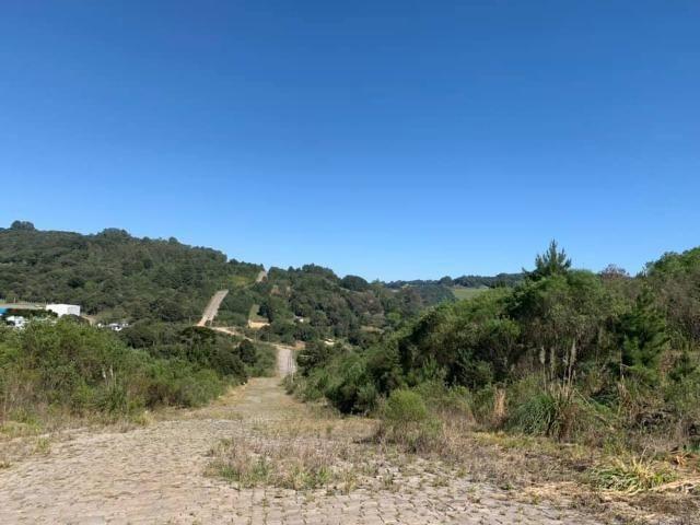 Caxias do Sul - Terreno - Parada Cristal - Foto 4