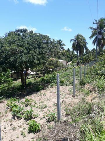 Terreno lindo em Japaratinga, proximo a praia e as bicas 950 m2 - Foto 3