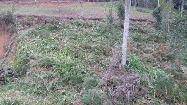 Terreno parcelado alto gasparinho - leia o anúncio - Foto 16