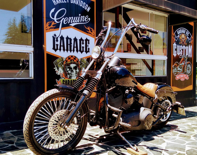 Night Train FX Carburada Harley Davidson - Foto 4