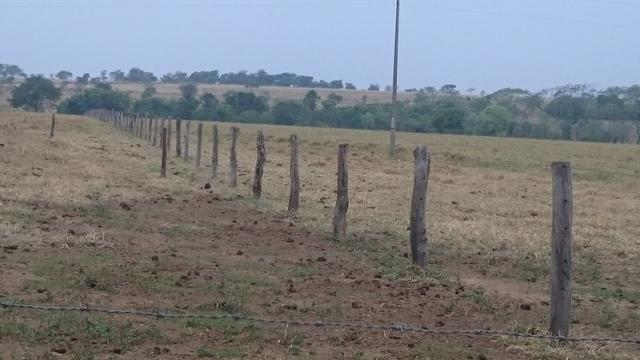 Fazenda para lavoura de 44 alqueires a venda na região de Caldas Novas GO - Foto 5
