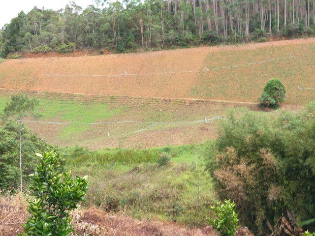 Propriedades 10 alqueires Araguaia - Foto 7