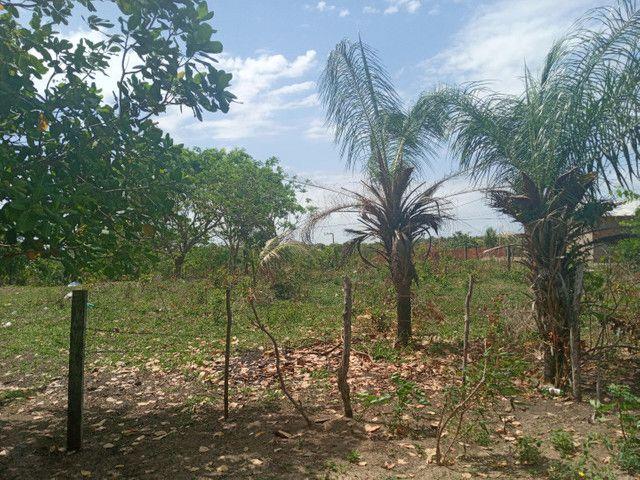 Terreno no panaquatira valor 15 mil  - Foto 5