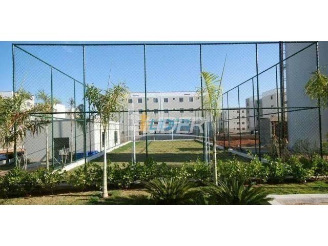 Apartamento à venda com 2 dormitórios em Shopping park, Uberlandia cod:21150 - Foto 3