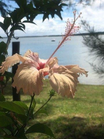 Lote barato na ilha Catu/berlinque -Vera Cruz oportunidade monte seu plano de pagamento! - Foto 13