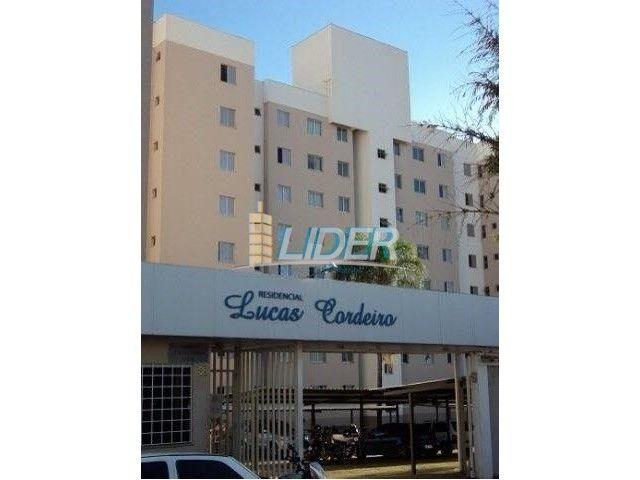 Apartamento à venda com 3 dormitórios em Nossa senhora das graças, Uberlandia cod:18404 - Foto 3