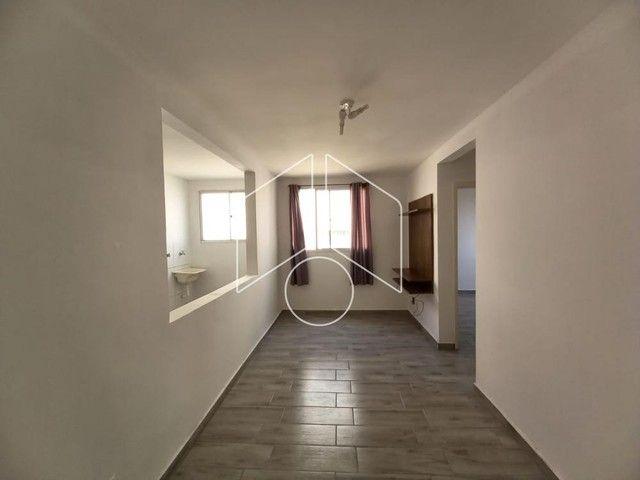 Apartamento para alugar com 2 dormitórios em Higienopolis, Marilia cod:L15779