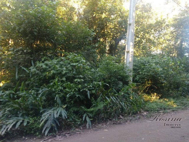 Terreno Localizado na Ponte Alta medindo 2.512,30 m á venda por R$ 110.000,00 Mil !!! - Foto 4