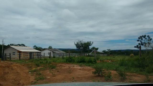 Vendo Fazenda com 1.523 Hectares na região do Manso - Foto 9