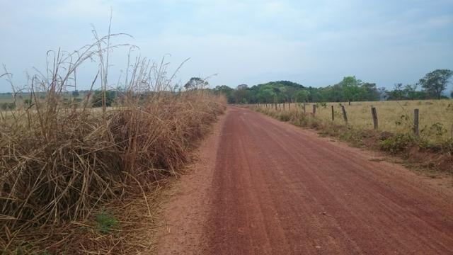 Fazenda para lavoura de 44 alqueires a venda na região de Caldas Novas GO - Foto 14