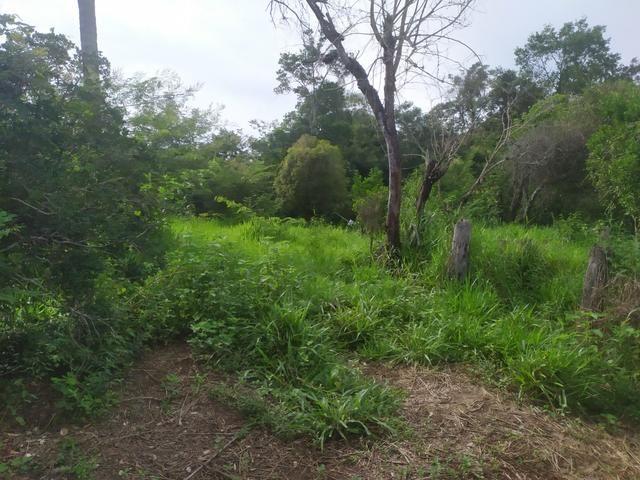 Vendo terreno a 4km da Água Quente - Foto 2