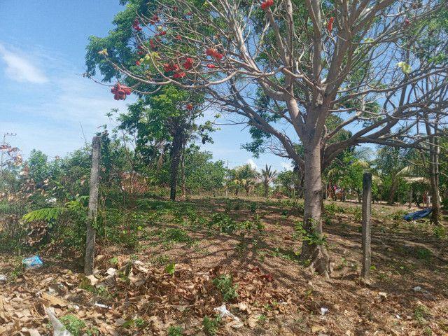 Terreno no panaquatira valor 15 mil  - Foto 4