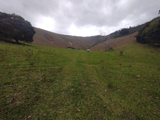 Fazendinha 74 hequitares região de Paraju - Foto 2