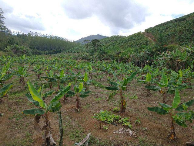 Propriedades 9 alqueires Araguaia - Foto 5