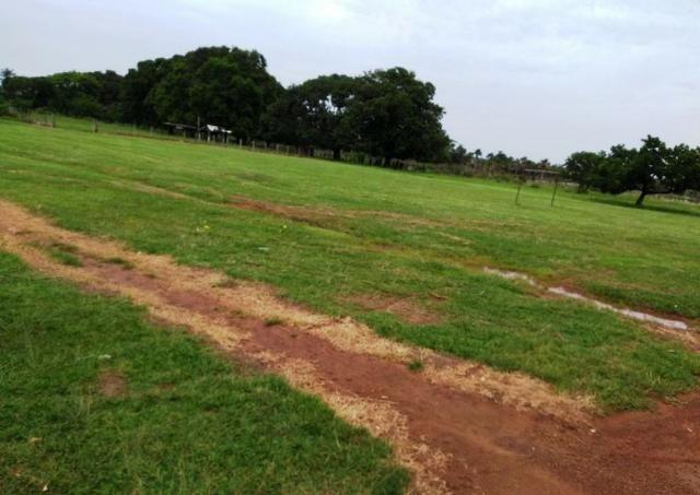 Fazenda 9.900 ha São Felix Do Araguaia - Foto 14
