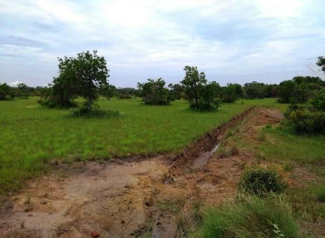Fazenda 9.900 ha São Felix Do Araguaia - Foto 11