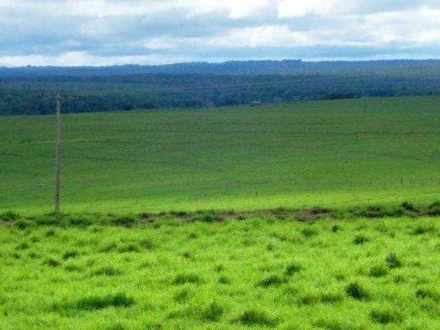 Fazenda 21.100 ha Diamantino MT - Foto 7