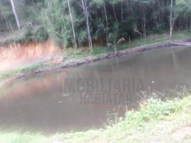 Chácara para venda em campina grande do sul, capivari - Foto 2