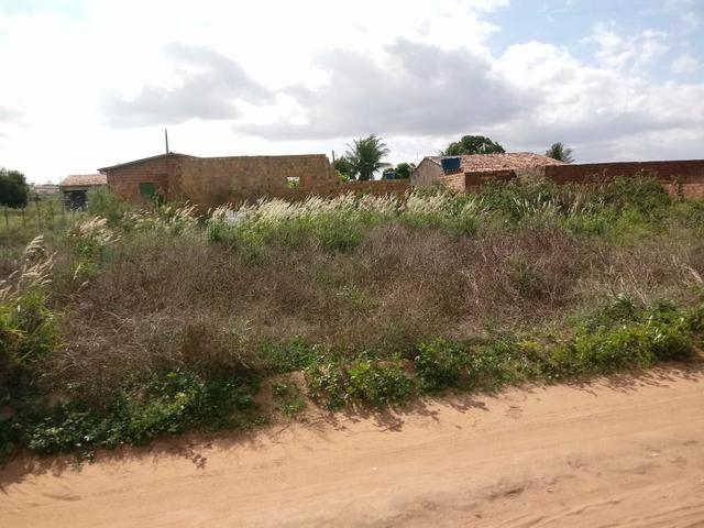 Terreno localizado na Taquarana - Foto 4