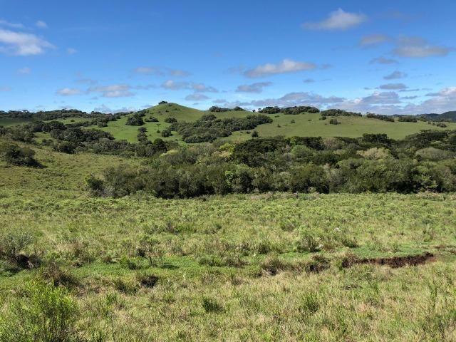 Fazenda 86 hectares Cazuza Ferreira - Foto 4
