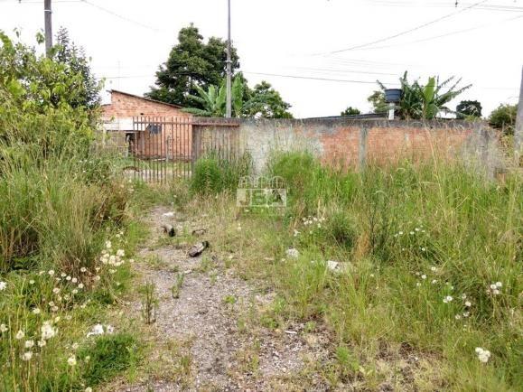 Terreno à venda em Borda do campo, São josé dos pinhais cod:11546.001 - Foto 6