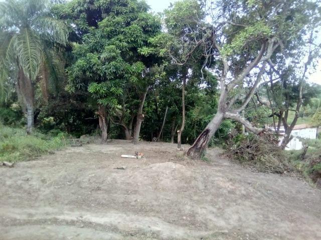 Terreno no pontal da ilha - Foto 3
