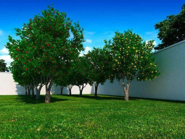 Gran jardim - 39m² - goiania, go - id3937 - Foto 10