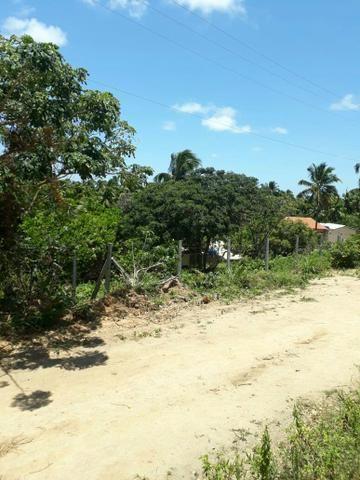 Terreno lindo em Japaratinga, proximo a praia e as bicas 950 m2 - Foto 4