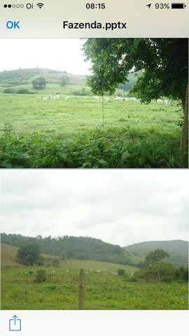 Venda-se está fazenda de 323 Alqueires no Estado de minas Gerais/MG - Foto 3