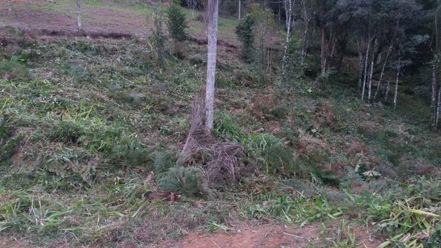 Terreno parcelado alto gasparinho - leia o anúncio - Foto 12