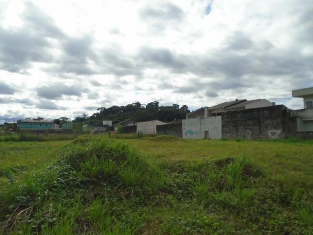 Terreno para alugar em Santa catarina, Joinville cod:08122.001 - Foto 7