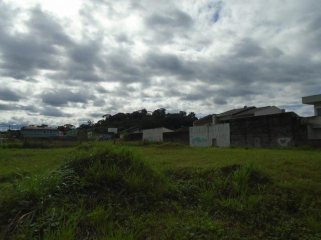Terreno para alugar em Santa catarina, Joinville cod:08122.001 - Foto 8