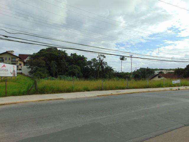Terreno para alugar em Atiradores, Joinville cod:30040.012 - Foto 2