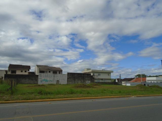 Terreno para alugar em Santa catarina, Joinville cod:08122.001