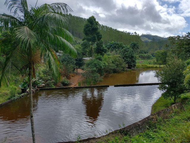 Propriedades 9 alqueires Araguaia - Foto 13