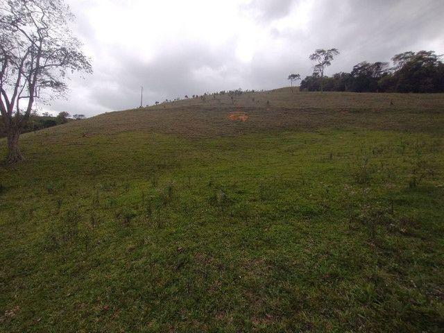 Fazendinha 74 hequitares região de Paraju - Foto 6