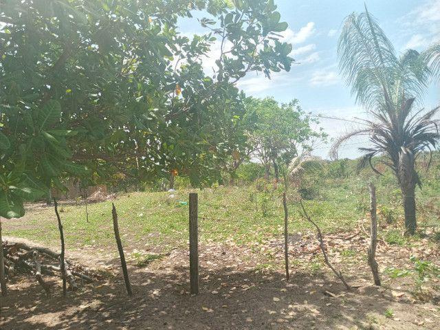 Terreno no panaquatira valor 15 mil  - Foto 2