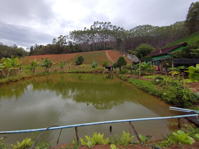 Propriedades 10 alqueires Araguaia - Foto 11