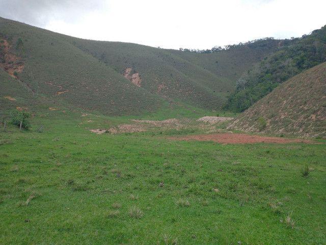 Fazendinha 74 hequitares região de Paraju - Foto 4