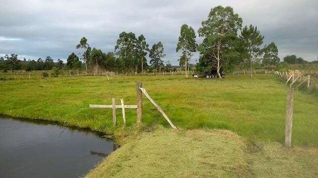Velleda oferece 2 hectares, 6 açudes, piscicultura, moradia e etc 1km RS040 - Foto 12