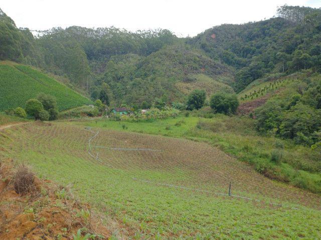 Propriedades 10 alqueires Araguaia - Foto 12
