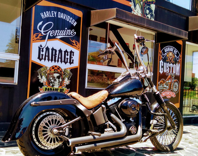 Night Train FX Carburada Harley Davidson - Foto 2
