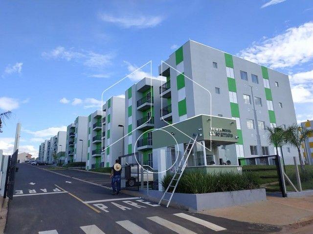 Apartamento para alugar com 2 dormitórios cod:L11259 - Foto 5