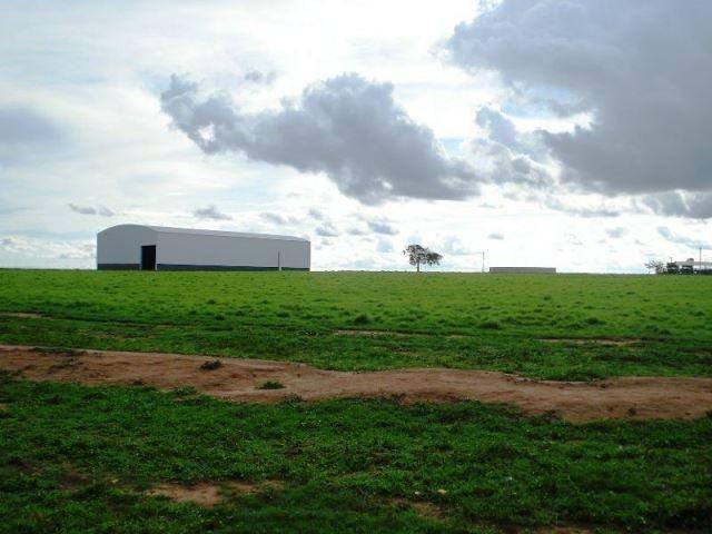 Fazenda 21.100 ha Diamantino MT - Foto 13