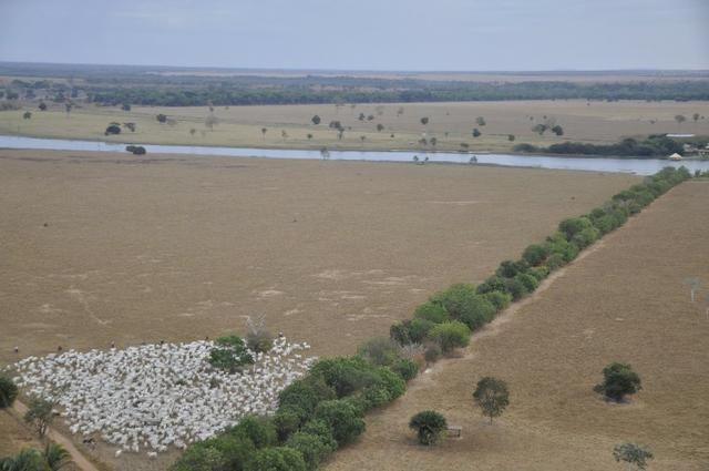 Fazenda 6,000 ha Vale do Araguaia MT. Cinematográfica - Foto 2