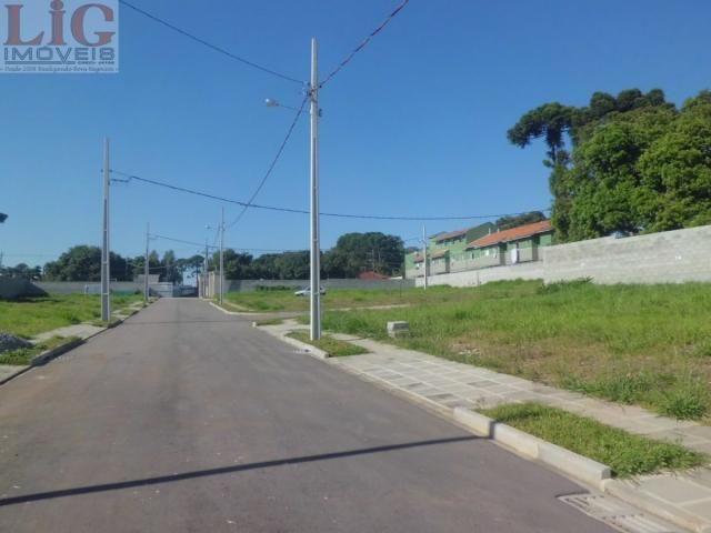 Terreno, Pinheirinho, Curitiba-PR - Foto 5