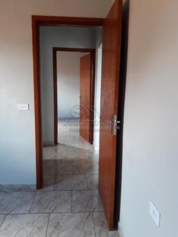 Casa à venda com 2 dormitórios em Planalto verde ii, Jaboticabal cod:V4275 - Foto 3