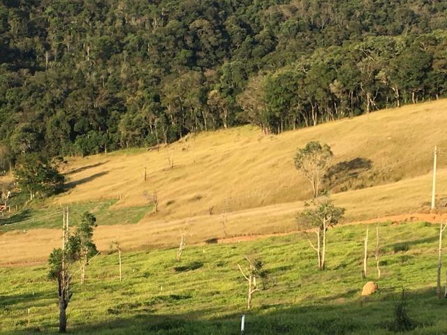 GE compre seu terreno plano para começo do ano por apenas: R$1.000 de entrada 500m2. - Foto 5