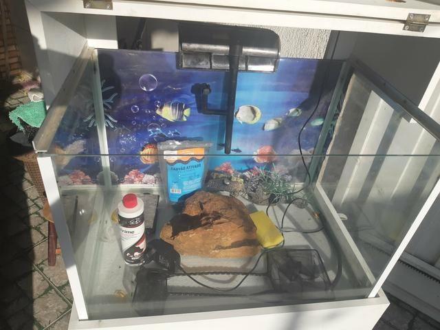 Aquario com movel - Foto 4