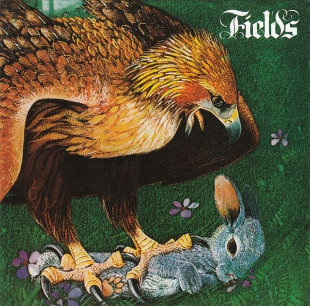 Fields - Fields